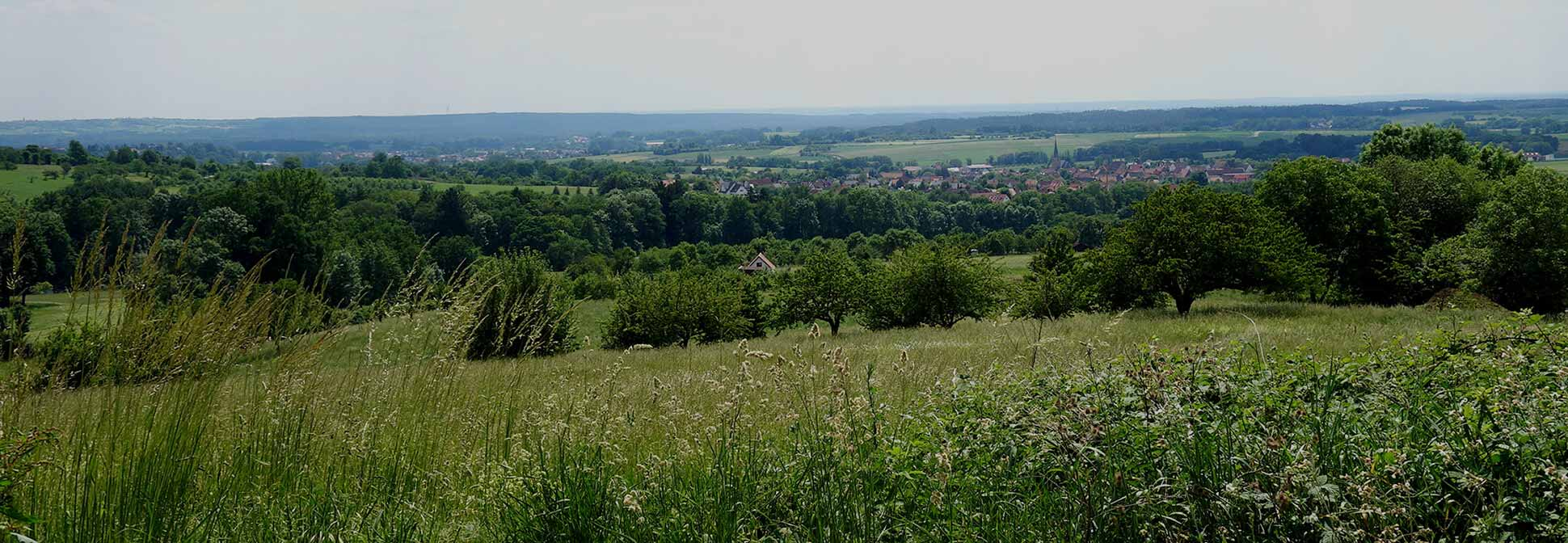 Landschaftsarchitekt Nürnberg